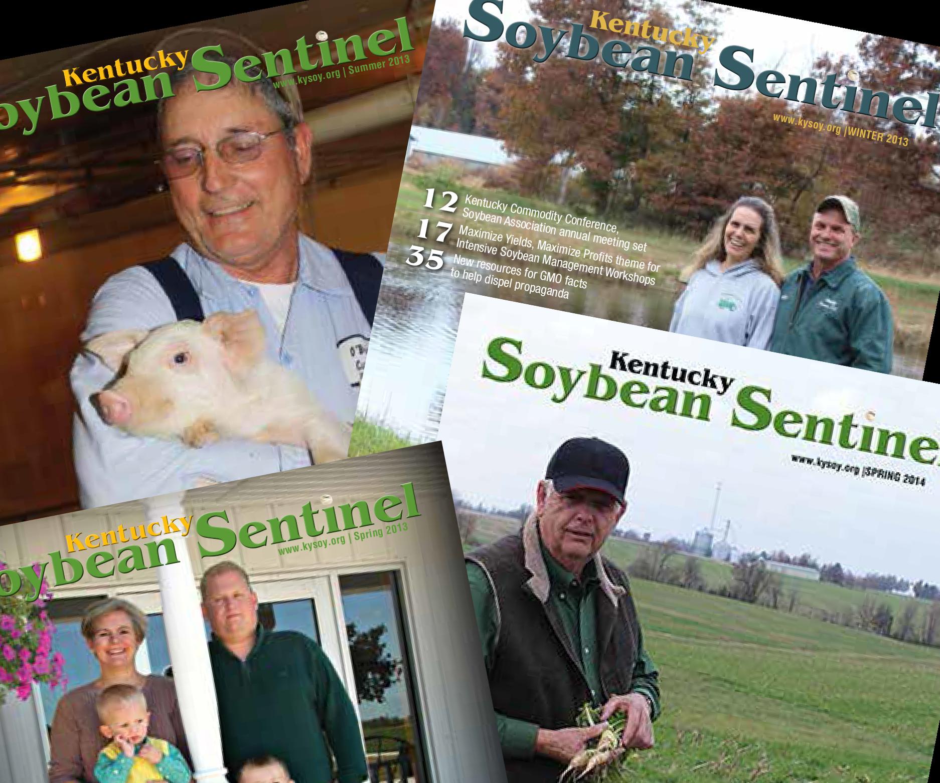 Soybean Sentinel